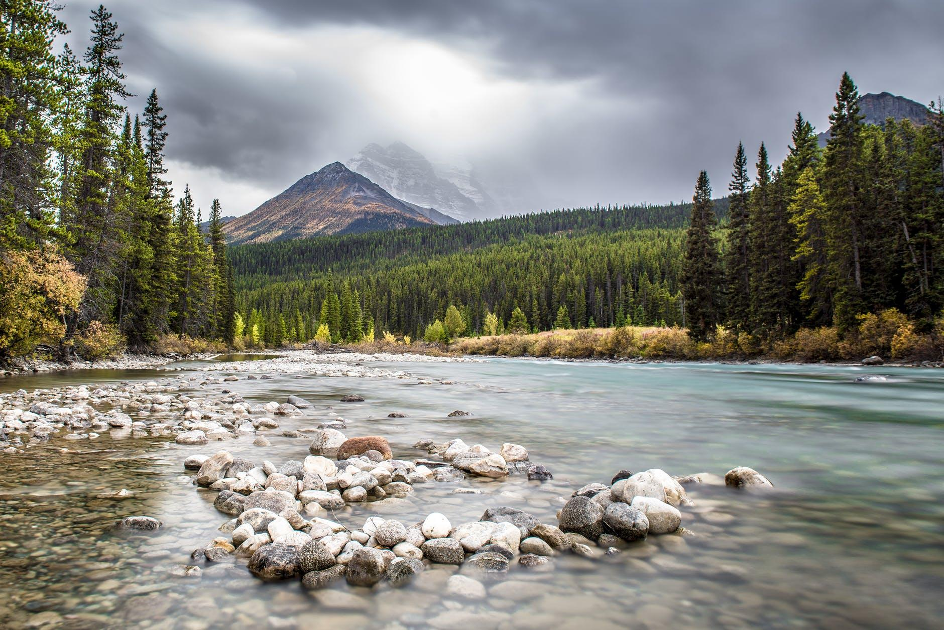 A beautiful landscape of nature is something you will be surrounded by after moving to Calgary.