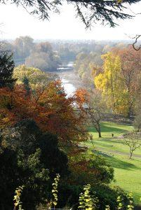 Enjoy the autumn after moving to Richmond Hill